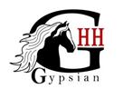 Studbook gypsians (Friesian Heritage)